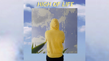 Waldoe - High of Life
